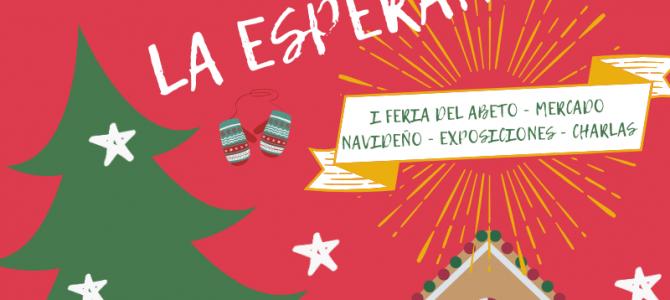 """Fiestas de """"La Virgen de La Esperanza"""""""